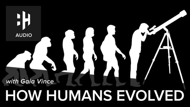 🎧 How Humans Evolved