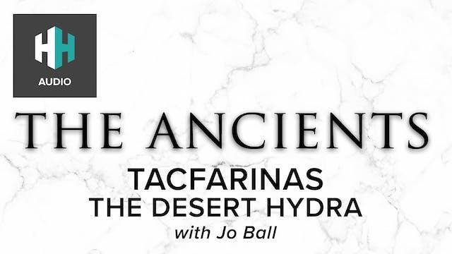 🎧 Tacfarinas: The Desert Hydra