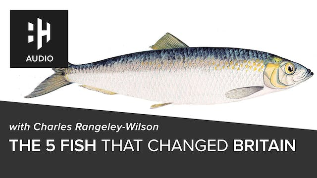 🎧 The 5 Fish That Made Britain with C...