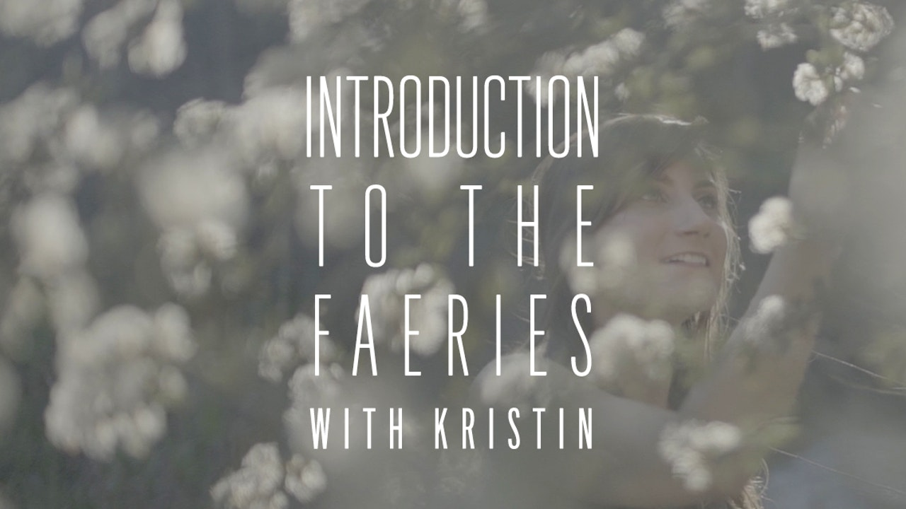 Introduction To the Faeries