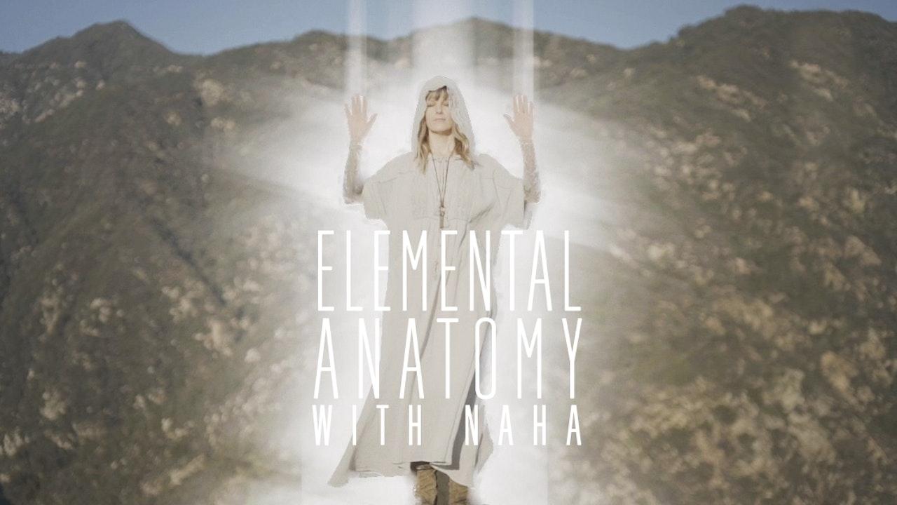Elemental Anatomy