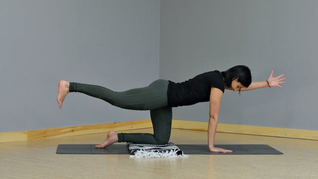 Roots: Building Your Posture