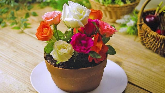 Blooming Flowerpot Cake