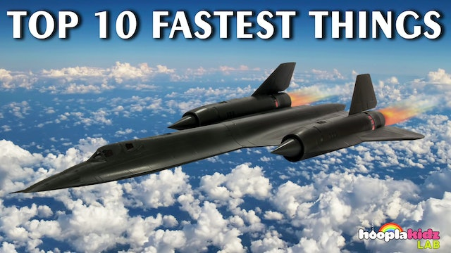 Top 10 Fastest Things