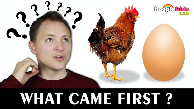 What Came First? Chicken or The Egg?