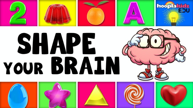 Shape Your Brain