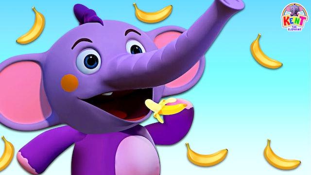 Kent The Elephant - Kent Collecting Banana