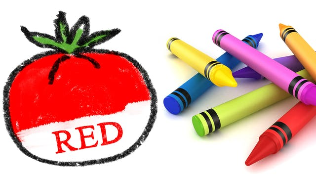 Learn Colors With Coloring Objects