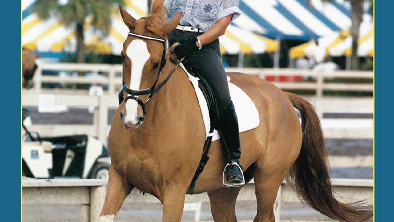 Half Halt-Demystified 2: Your Horse on the Bit