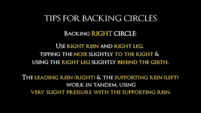 Disc 4 – Chapter 30 - Backing/Backing Circles - Tips
