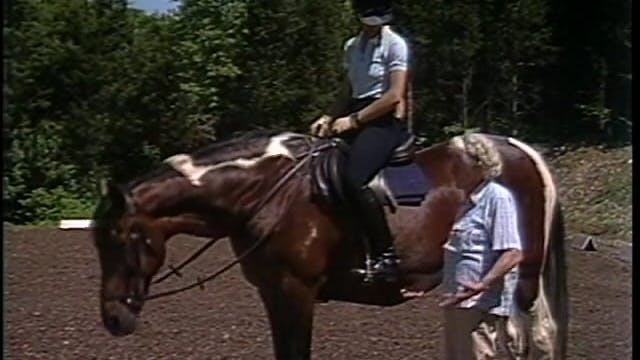 Centered Riding With Sally Swift Part2-VHX Film with Stereo
