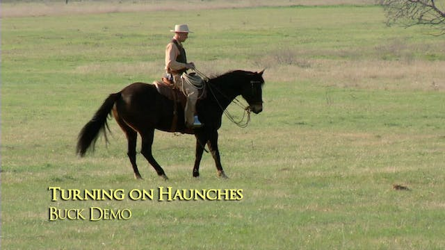 Disc 5 – Chapter 14 - Turning on Haunches - Buck Demo