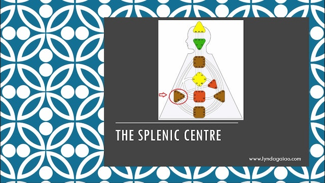 Intro to Awareness Centres and the Spleen Centre