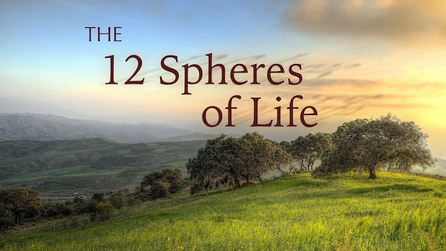 12 Spheres of Life Interview Collection