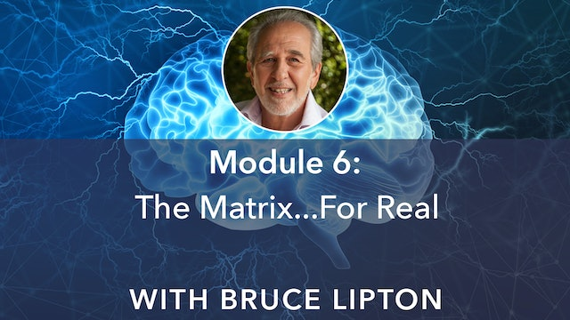 6: The Matrix… For Real with Bruce Lipton