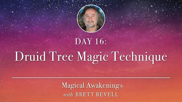 Magical Awakening® Day 16: Druid Tree...