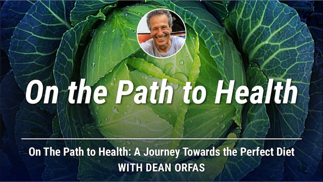 On The Path to Health - On The Path T...
