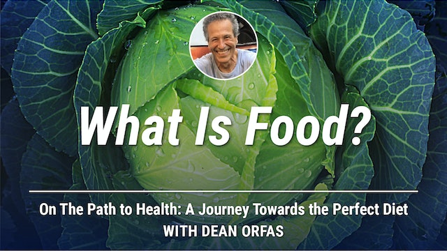 On The Path to Health - What Is Food