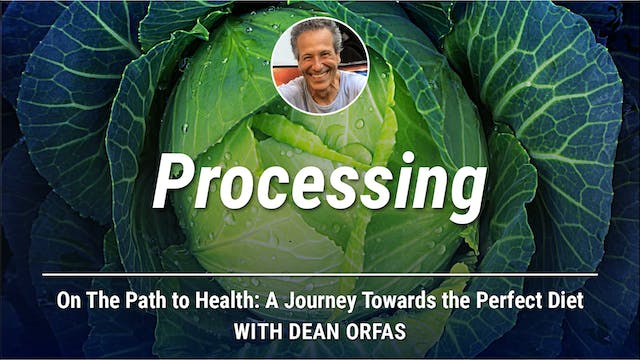 On The Path to Health - Processing