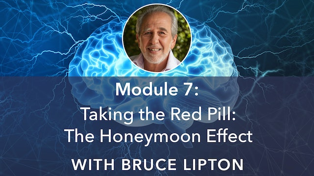 7: Taking the Red Pill: The Honeymoon Effect with Bruce Lipton