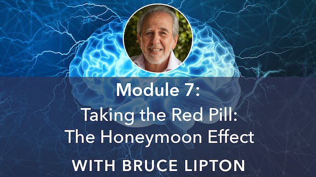 7: Taking the Red Pill: The Honeymoon...