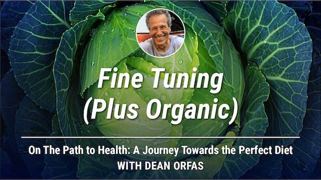 On The Path to Health - Fine Tuning (...
