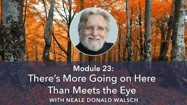23: There's More Going On Here Than Meets the Eye with Neale Donald Walsch