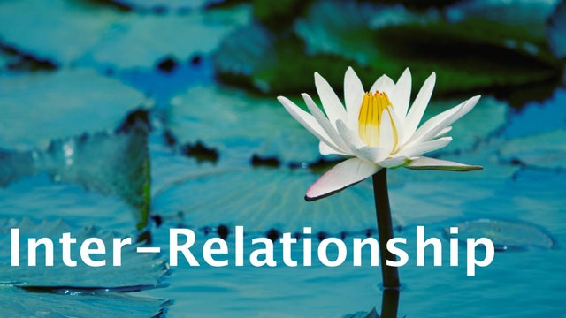11-1-From-Disconnection-to-Interconnection,-Interaction-and-Inter-relationship
