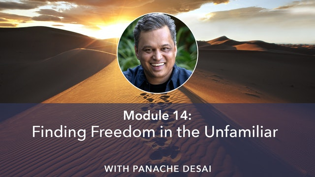 14: Finding Freedom in the Unfamiliar with Panache Desai