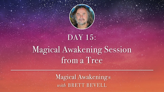 Magical Awakening® Day 15: Magical Awakening Session from a Tree