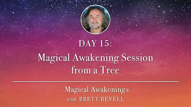 Magical Awakening® Day 15: Magical Aw...