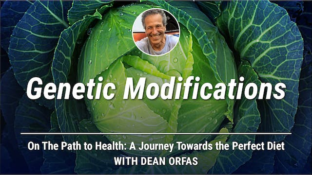 On The Path to Health - Genetic Modif...