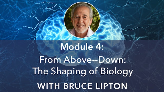 4: From Above–Down: The Shaping of Biology with Bruce Lipton
