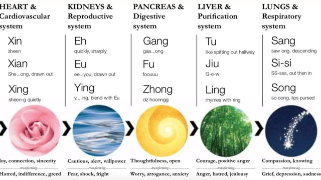 03-4-Sound-Healing-Chart.pdf