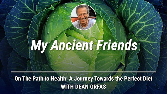 On The Path to Health - My Ancient Friends