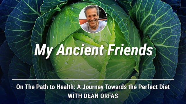 On The Path to Health - My Ancient Fr...