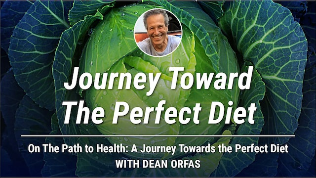 On The Path to Health - Journey Toward The Perfect Diet
