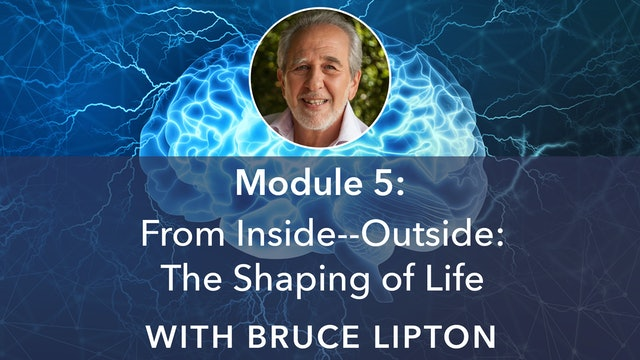 5: From Inside–Outside: The Shaping of Life with Bruce Lipton