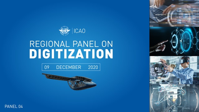 Regional Panel on Digitization (SAM)