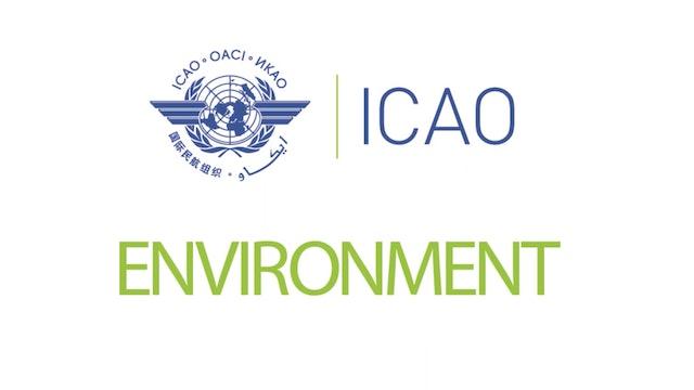 CORSIA Eligible Emissions Units