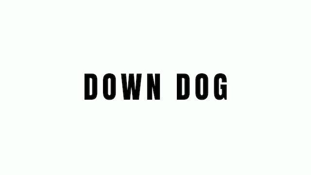 Down Dog Breakdown
