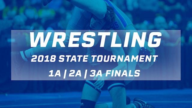 2018 Wrestling Finals