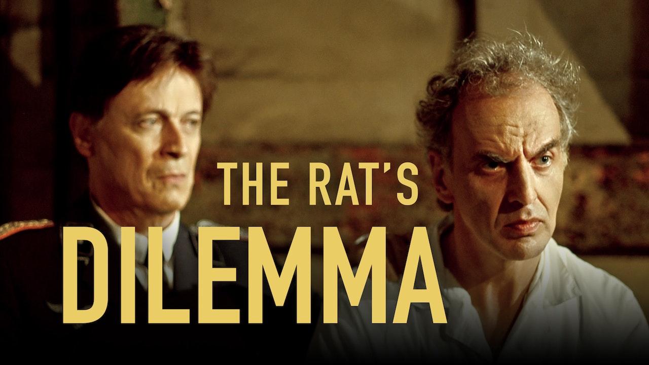 The Rat's Dilemma