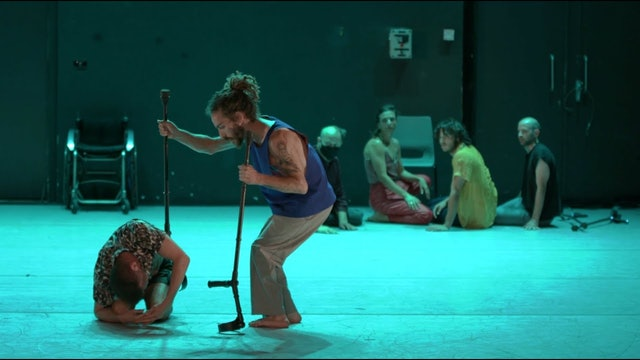 Shape On Us | Vertigo Dance Company