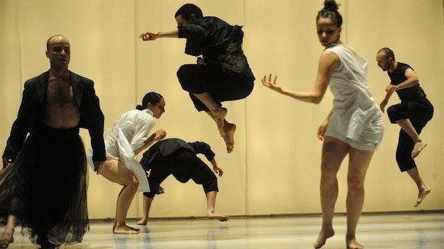 Null | Vertigo Dance Company