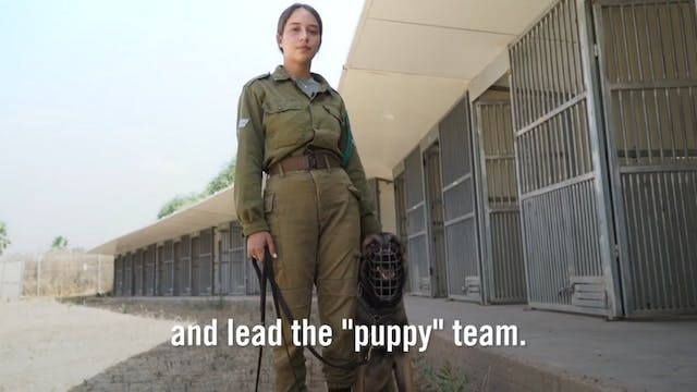 6. Inside Scoop with IDF Dog Trainer