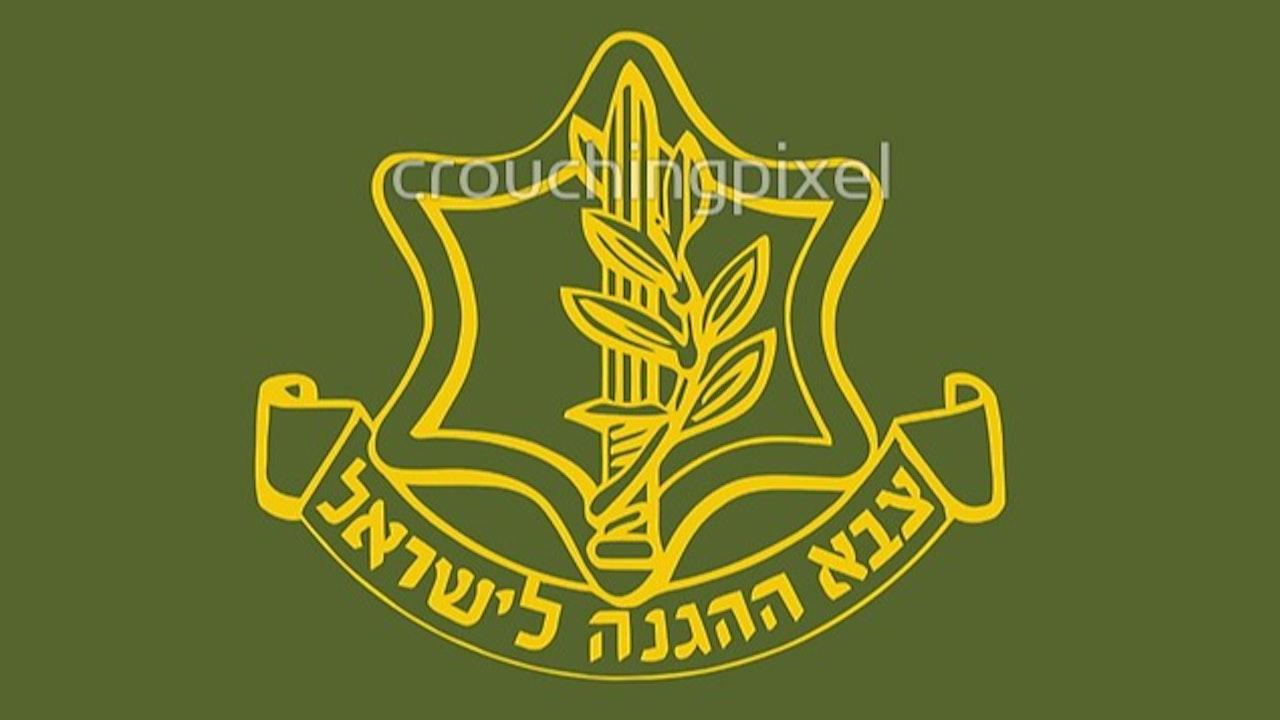 The IDF