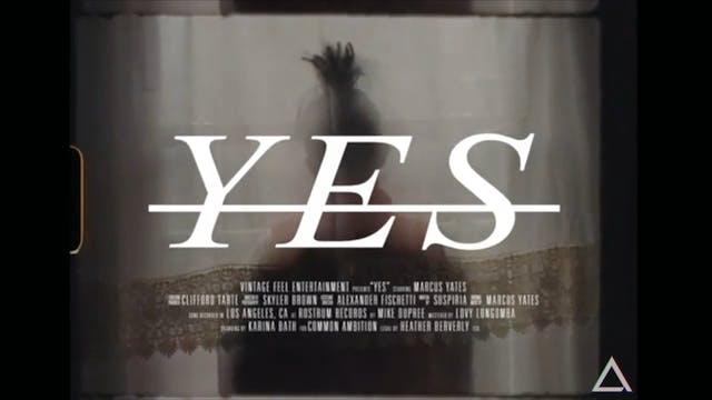 YES • Marcus Yates