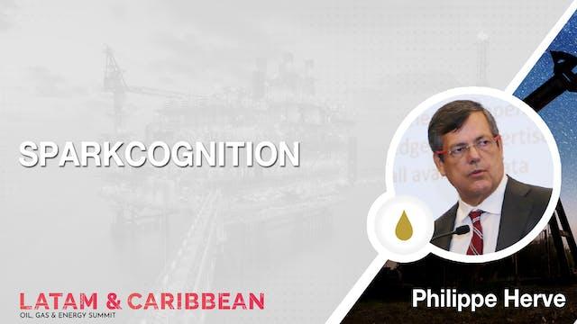 VP Energy: Philippe Herve