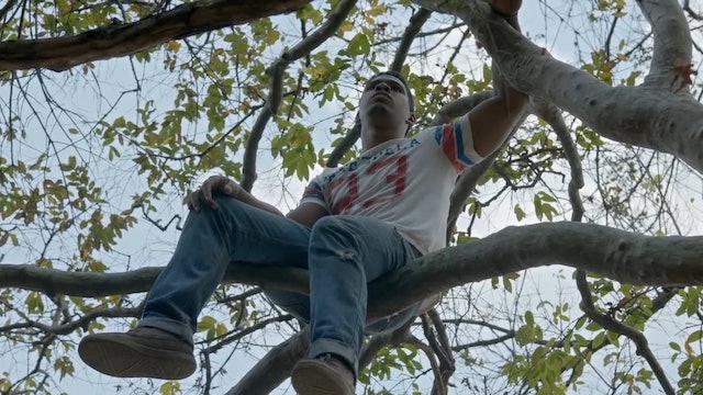Watch La Soledad Trailer